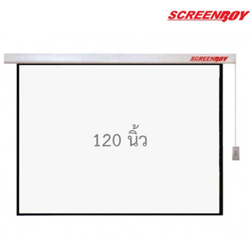 """Motorized Screen 120"""""""