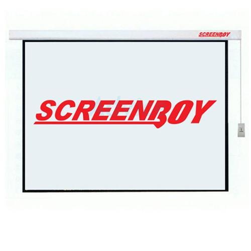 """Motorized Screen 150"""""""
