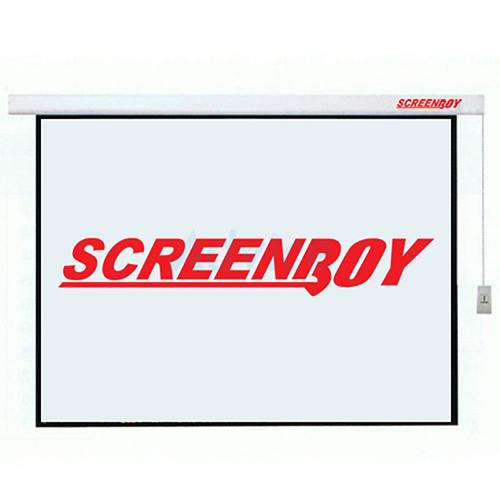 """Motorized Screen 240"""""""