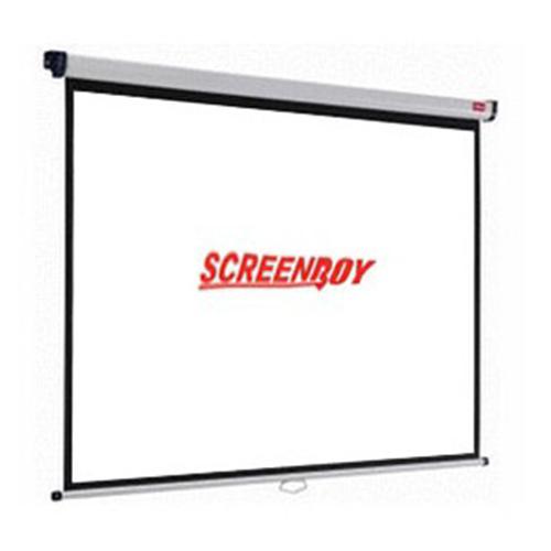 """Wall screen 100"""""""